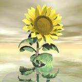 Beautiful yellow sunflower - 3D render Stock Photo
