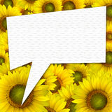 Beautiful yellow Sunflower petals closeup background with quote Royalty Free Stock Images