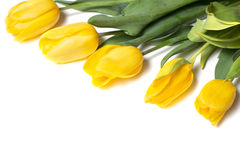 Beautiful yellow tulips on wooden background. Top view, copy space Royalty Free Stock Photos