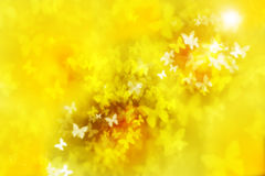 Beautiful yellow and white blurred butterflies flying to the sun Royalty Free Stock Photo