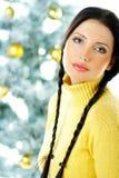 Beautiful Yellow Xmas Stock Photography