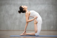 Beautiful Yoga: camel pose Stock Photography