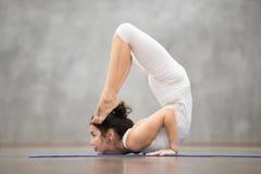 Beautiful Yoga: Ganda Bherundasana pose Stock Image