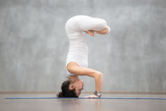 headstand pose variation stock photo  image 33113740