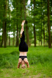 Beautiful yoga session in woods Stock Images
