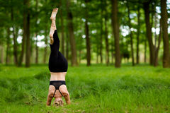 Beautiful yoga session in woods Royalty Free Stock Images