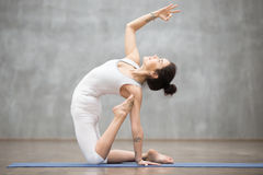 Beautiful Yoga: ustrasana pose Royalty Free Stock Photo