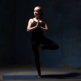 Beautiful Yoga Woman Doing Tree Pose Royalty Free Stock Photos