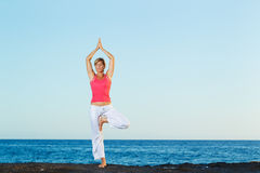 Beautiful Yoga woman Practicing Yoga Stock Images
