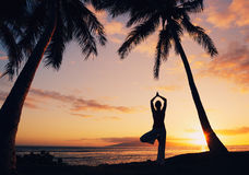 Beautiful Yoga Woman at Sunset Stock Images