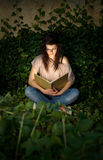 Beautiful yopung brunette immersed in readin Stock Images