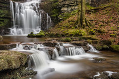 Beautiful Yorkshire Waterfall Scaleber Force In Peaceful Woodland. Stock Photography