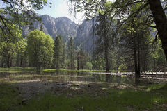 Beautiful yosemite valley Stock Photos
