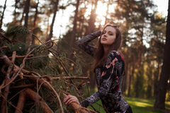 Beautiful young adult girl lying on a fallen tree Stock Images