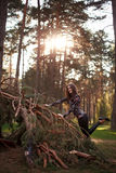 Beautiful young adult girl lying on a fallen tree, sunset Royalty Free Stock Photo