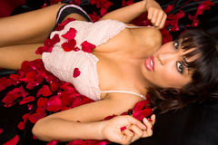 Beautiful Young Adult Woman Laying Black Satin Red Rose Petals Stock Image
