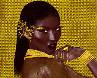 A beautiful young African woman wearing gold jewelry Stock Photos
