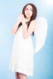 Beautiful young angel Stock Image