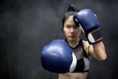 Young Asian woman posing with boxing gloves Stock Image