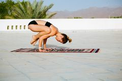 Woman practicing yoga on the roof with palm trees stock images