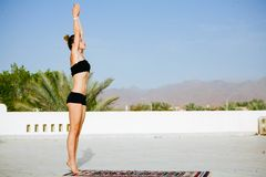 Woman practicing yoga on the roof with palm trees royalty free stock photo