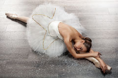 Beautiful young ballerina in ballet pose Royalty Free Stock Images