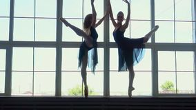 Beautiful young ballerinas dance against the background of a panoramic window. Ballerina is wearing tutu and pointe stock video
