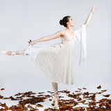 Beautiful young ballet dancer Stock Photo