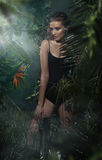 Beautiful young blond girl posing in tropical forest. Beautiful young blond lady posing in tropical forest Royalty Free Stock Photos