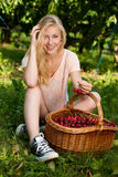 Beautiful young blond woman harvesting cherries on a hot spring Royalty Free Stock Image