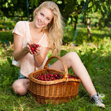 Beautiful young blond woman harvesting cherries on a hot spring Stock Photo