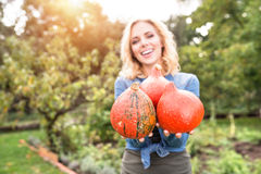 Beautiful young blond woman in her garden harvesting pumpkins Stock Images