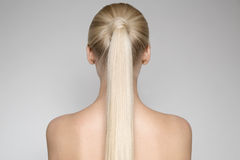 Beautiful Young Blond Woman With Ponytail Hairstуle Stock Photos