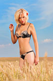 Beautiful young blond woman posing on the field Stock Image