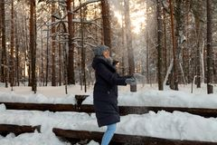 A beautiful young blonde girl in a winter coniferous forest is standing and catching with her hands the snow falling from the royalty free stock photos