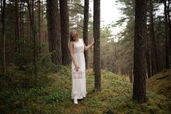 Walking Beautiful young blonde woman forest nymph in white dress in evergreen wood stock photos