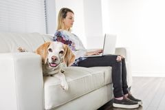 Beautiful young blonde woman with her dog at home Stock Photo