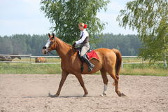 Beautiful young blonde woman riding chestnut horse Stock Images