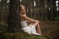 Beautiful young blonde woman sitting in forest nymph in white dress in evergreen wood royalty free stock images