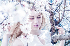 Beautiful young blonde woman. Standing near the apple tree Royalty Free Stock Photos