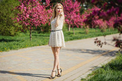 Beautiful young blonde woman in white dress walking at spring park with pink cherry trees Stock Photo