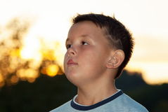 Beautiful young boy posing outdoor Royalty Free Stock Photography
