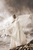 Beautiful young bride. Beautiful brunet bride in wedding dress Stock Images