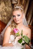 Beautiful young bride Royalty Free Stock Image