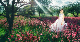 Beautiful young bride in field, happy woman enjoying flowers. Stock Images