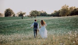 Beautiful bride and groom at sunset in green nature. Stock Photos