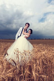 Beautiful young bride and groom in wheat field Royalty Free Stock Photo