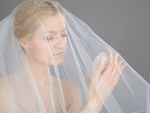 Beautiful Young Bride In White Veil Royalty Free Stock Photography