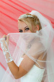 Beautiful young bride keep the veil. Royalty Free Stock Photo