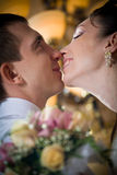 Beautiful young bride kissing groom Royalty Free Stock Photography
